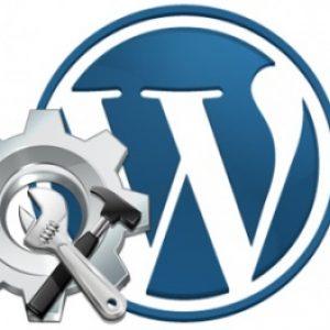 Как установить новую тему wordpress на сайт — правильная последовательность