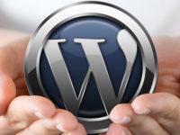 На какой платформе создать сайт? Что выбрать новичку?