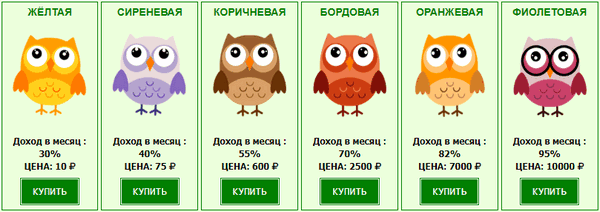 Магазин сов в Money Owls